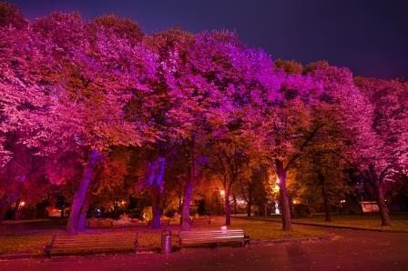 Park Gorkogo_Philips_BCA_2