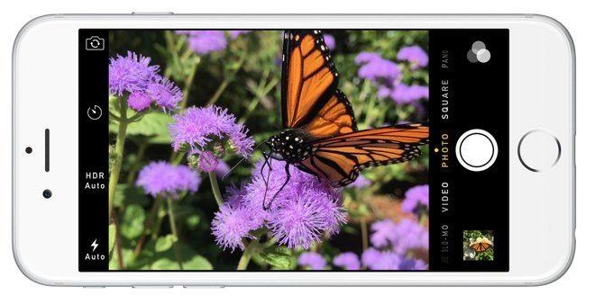 12998-7353-iphone6-cameraapp-l