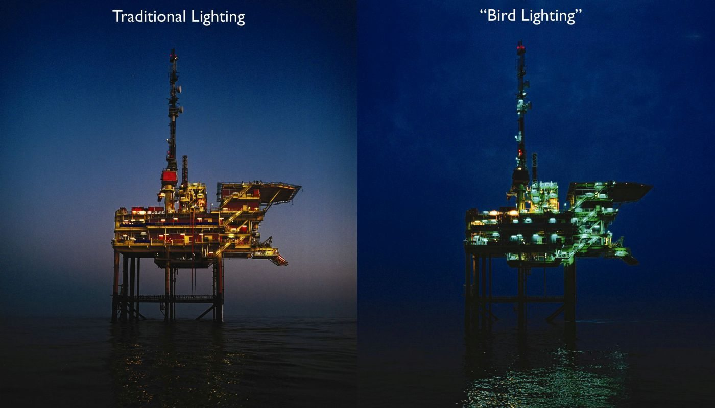 Z1056 (van Ph website), Booreiland, vogelvriendelijke verlichting, Platform L15 bij Vlieland, 2007, 811.17 (PN, 24-8-2007)