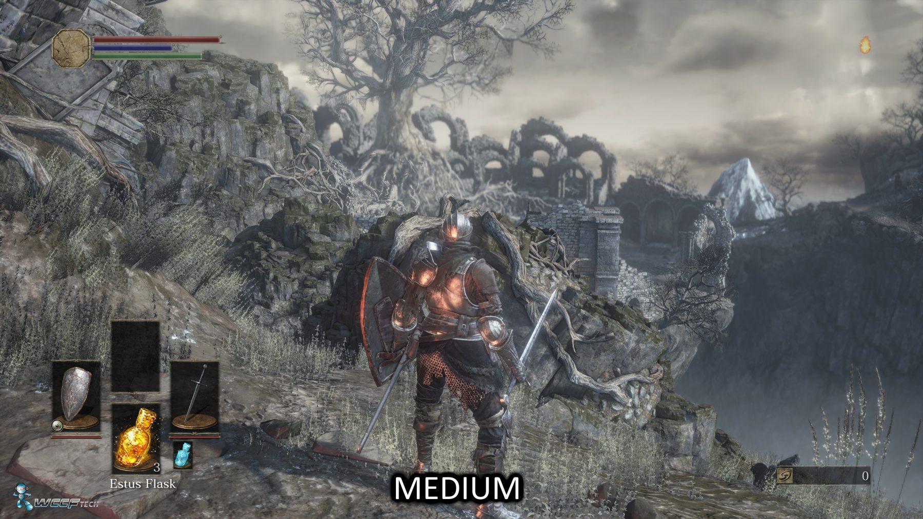 Dark Souls 3 middle