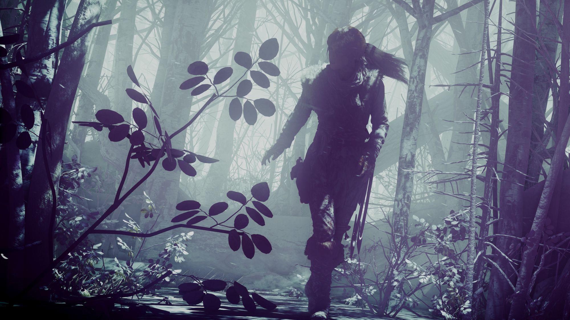 rise_of_the_tomb_raider_lara_croft_4k-HD